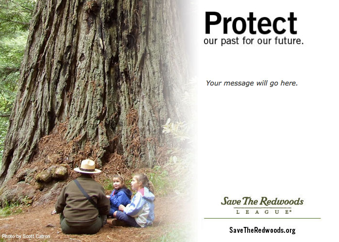 Protect our past for our future!